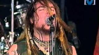 Watch Soulfly No video