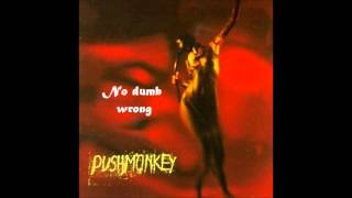Watch Pushmonkey No Dumb Wrong video