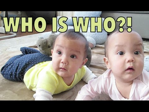 WHO IS WHO?! - September 19, 2014 - itsJudysLife Daily Vlog