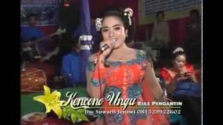 Pak Tua Voc. Erin Kusuma Dangdut Campursari Supra Nada Live Jenawi 2015