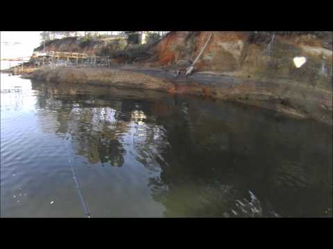 Winter Crappie Fishing Toledo Bend Dec 29 2011