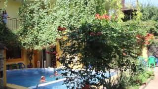 Ленинградской области: витязево гостевой дом ирийский сад страны Россия Воронежская