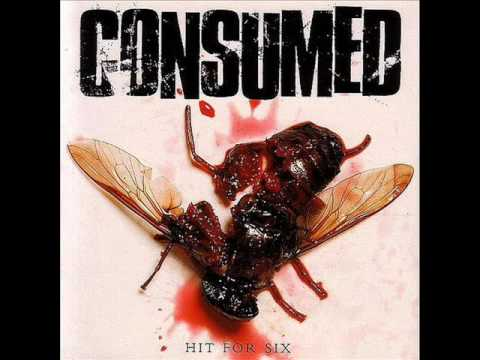 Consumed - Nicky Fry