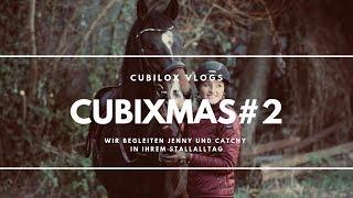 VLOG#2 ? cubiXMAS - Wir begleiten Jenny und Catchy in ihrem Stallalltag | Cubilox Vlogs