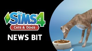The Sims 4 News Bit: Cats & Dogs Videos, Screens, & More! (NEW INFO)