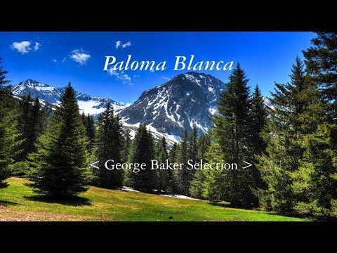 Paloma Blanca (비에 젖은 비둘기) - George Baker Selection