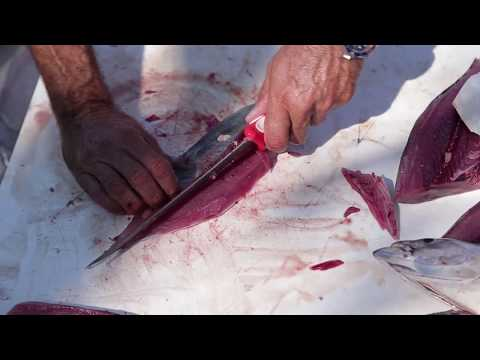 Captain Scott Walker Shows Us How To Fillet With The Bubba Blade