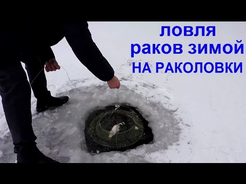 Ловля раков зимой на раколовки