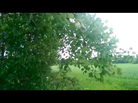 HTC One (M8): Hidastusvideonäyte