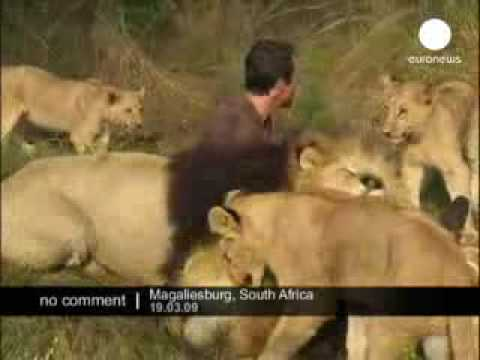 rub with Loin in, Magaliesburg,South Africa = Narmiimhsah@yahoo.com