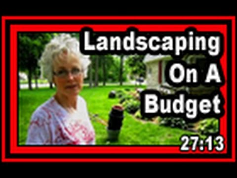 Landscaping On A Budget - Wisconsin Garden Video Blog 411