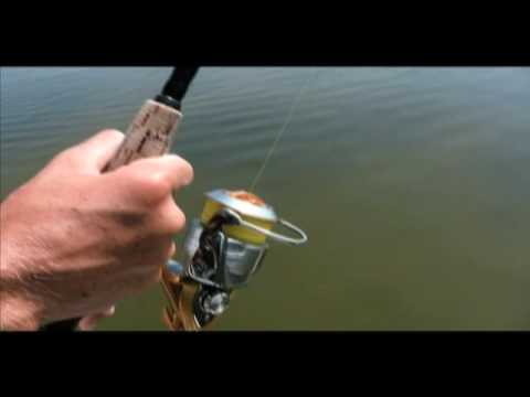 Mosquito Lagoon Part 1 - 
