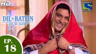 Dil Ki Baatein Dil Hi Jaane - दिल की बातें दिल ही जाने - Episode 18 - 21st April 2015