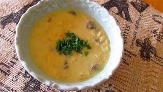 کاچی سبزواری Tojsiabvideo.com chicken noodle soup سوپ ورمیشل