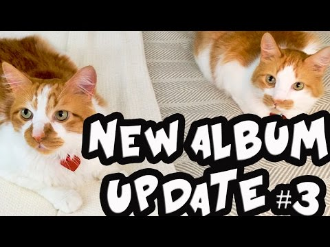 NEW ALBUM UPDATE! (3rd Indiegogo update) ft President Fluffy & Chairman Meow