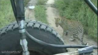 Karula and Boys Say Goodbye to Lieschen & Pieter
