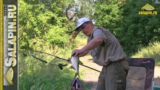 рыбалка на Москва-реке (рыбалка ...: viyoutube.com/video/T-LdYiHi27Q/рыбалка в москве...