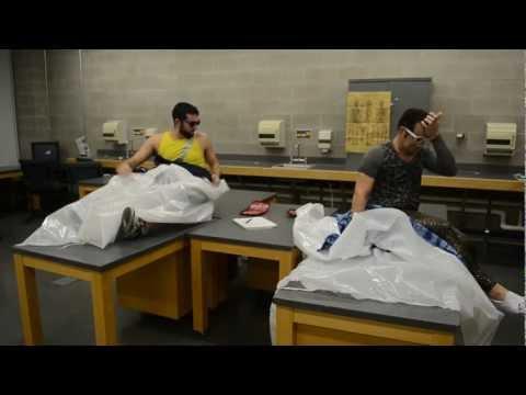 LMGMO ft. Dr. Naasty - Study Rock Anthem - NYMC Class of 2015 (HD)