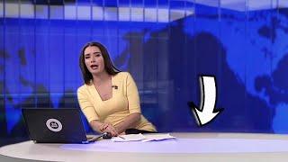 شاهد .. مذيعة تفاجأ بوجود كلب على الهواء أثناء تقديمها النشرة الإخبارية