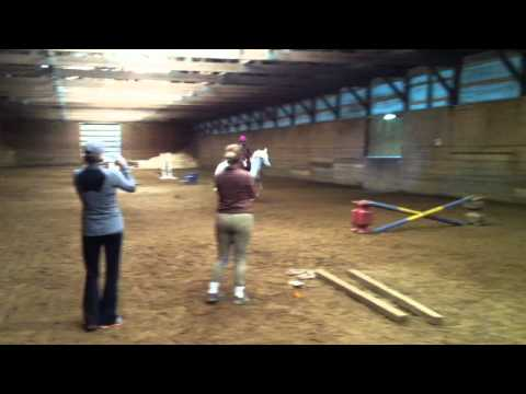 Winter The Pony - With Ava video