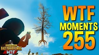 PUBG Daily Funny WTF Moments Highlights Ep 255
