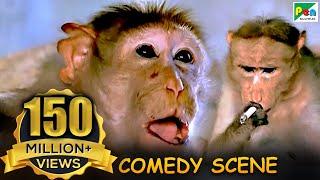 Monkey Funny Scene   Comedy Scene   Jawab Hum Denge   Jackie Shroff, Shatrughan Sinha, Sridevi   HD