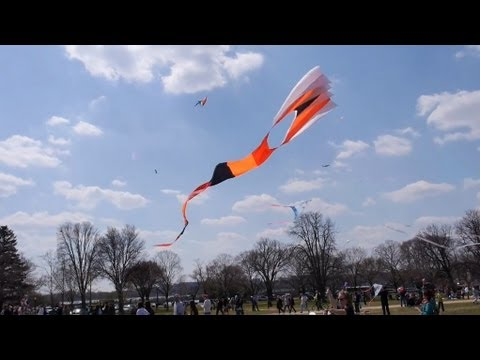 2013 Blossom Kite Festival in Washington DC