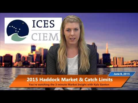 3MMI - Steady Haddock Pricing Amidst Turbulent Norwegian Biomass Analysis