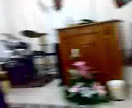 LLUVIA DE ORO EN LA IGLESIA MONTE DE LOS OLIVOS