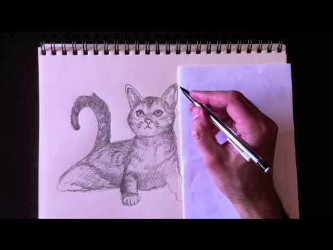 Comment dessiner des animaux en 3d - Comment dessiner des animaux ...