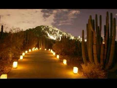 Desert Botanical Gardens Luminarias Youtube