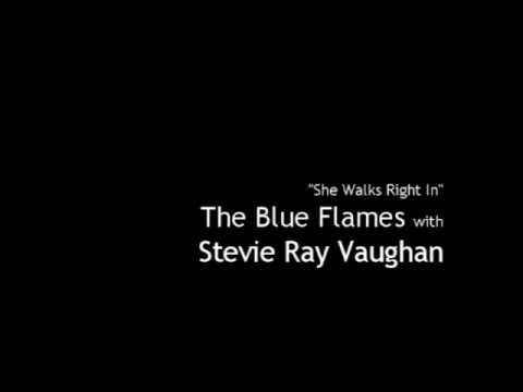 Stevie Ray Vaughan - Blue Barden