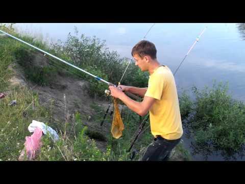 ловля фидером видео диалоги о рыбалке