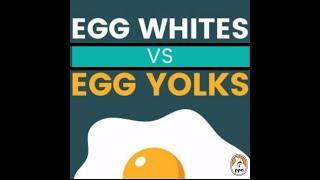 EGG WHITES VS EGG YOLKS
