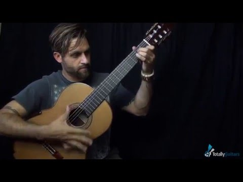 Rasgueado Technique By Max Rich – Totally Guitars Lesson Preview
