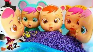 Bebes Llorones Jugando en la Piscina de Bolas de Colores