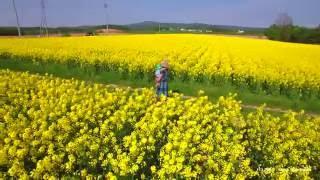 【DJI Phantom 4】 菜の花畑 北海道滝川市 DRONE×HOKKAIDO 4K Rape Field Hokkaido Takikawa.