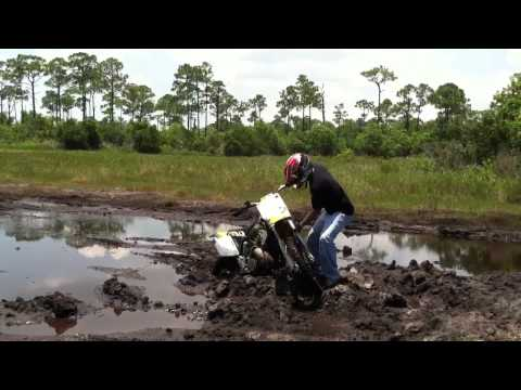 Dirt Bike Stuck in the Mud Poinciana