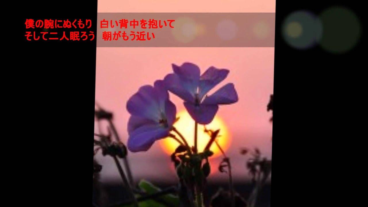 鹿内孝の画像 p1_29