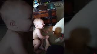 Funny baby video!