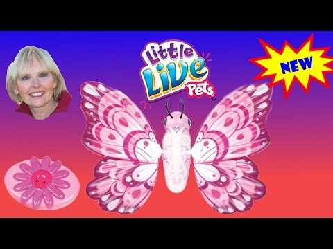 ♥♥  Precious Wings Butterfly from Little Live Pets