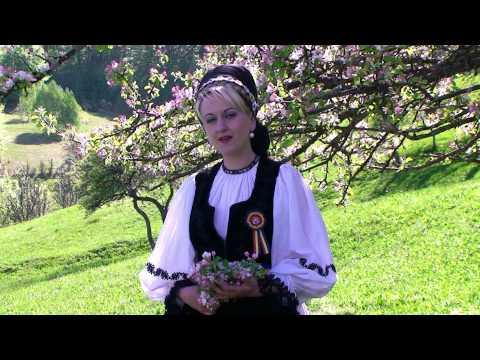 Mirela Manescu Felea - Badita, buchet de flori