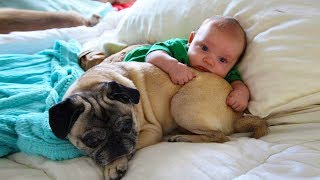 Cute Dog and Baby Love Hugging and Cuddling | Dog loves Baby