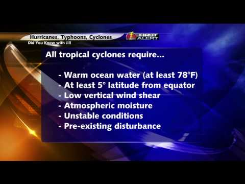 Did You Know With Jill: Hurricane, Typhoon, or Cyclone?