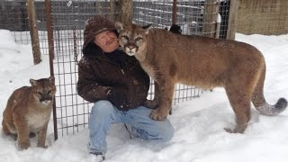 Mauled by Cougar, Max and Genevieve in Michigan's Upper Peninsula