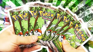 Opening 12x HEAVY JUNGLE 1ST EDITION Pokemon Booster Packs !!! (1 BOX)