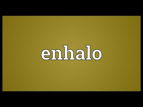 Header of enhalo