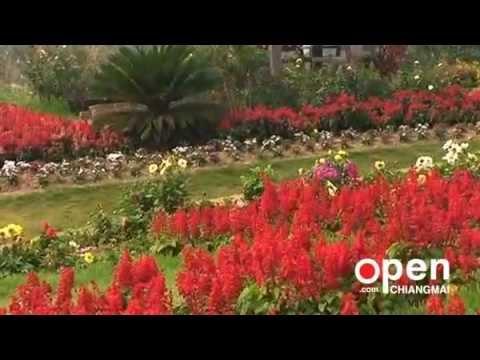 Queen Sirikit Botanic Garden (QSBG)