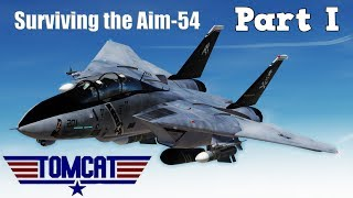 DCS: Encountering the Aim-54 Phoenix Part 1- F-14 Tomcat Mod Vs Mig-29