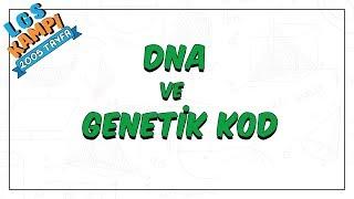DNA ve Genetik Kod | LGS Kampı